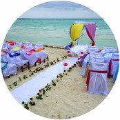 Eine Besonderheit auf jeder Hochzeitsfeier - die freie Trauung. Mit meiner Zusatzoption erhalten Sie dafür alles Wichtige.