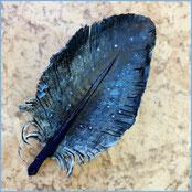 kleine Brosche Lederfeder, dunkle Blautöne.