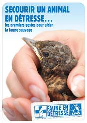 Secourir un animal en détresse