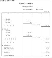 平成30年度 貸借対照表
