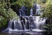 Neuseeland, wasserfall, waterfall, wald, wods, simply picture. Wasserfall im Wald mit Spiegelungen des Sonnenlichts im Wasser.