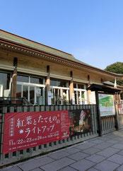 ●さらに散策。江戸東京たてもの園の前です。11月下旬のライトアップの案内がありました
