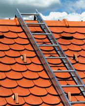 Aluminum roof ladder