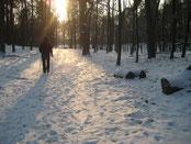 nordic walking kurse in berlin im winter