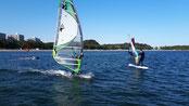 ウインドサーフィン スピードウォール 海の公園 横浜 神奈川 スクール 体験 SPEEDWALL WINDSURFIN SUP