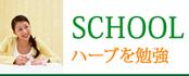 SCHOOL ハーブを勉強