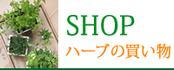 SHOP ハーブの買い物