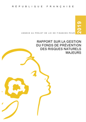 Rapport FPRNM 2019