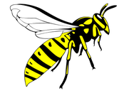 Wasp fly home Spayflasche Wespenspray Wespe