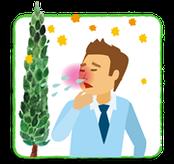 大阪府 堺市 耳鼻科 耳鼻咽喉科 しまだ耳鼻咽喉科 アレルギー 花粉症