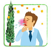 大阪府 堺市 泉ヶ丘 耳鼻科 耳鼻咽喉科 しまだ耳鼻咽喉科 アレルギー 花粉症