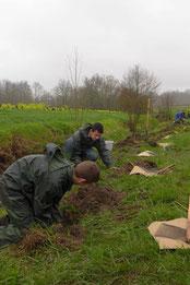 Plantation sur le Marmant par les 1ères GMNF du Cluzeau (Mars 2015)