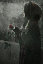Ravienne Art Model - Foto, Fotokunst, digitale Bildbearbeitung, Rose