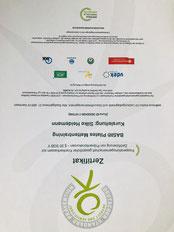 Zertifikat Silke Heidemann Pilates