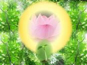 ダライ・ラマ-慈悲の心の育て方【自己変容の道】