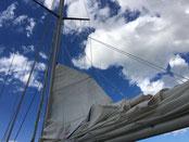 sailingzuerich, sailing zuerich,  segelschule, zürichsee, firmen events, richterswil, stäfa, segeln, zuerich, einzelunterricht, gruppenkurse, auffrischungskurse, segelkurs