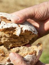 Ein Brot wird gebrochen