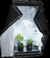 Growbox / Homebox Hanf Cannabis Anbau Indoor Growroom (Anbauschrank)