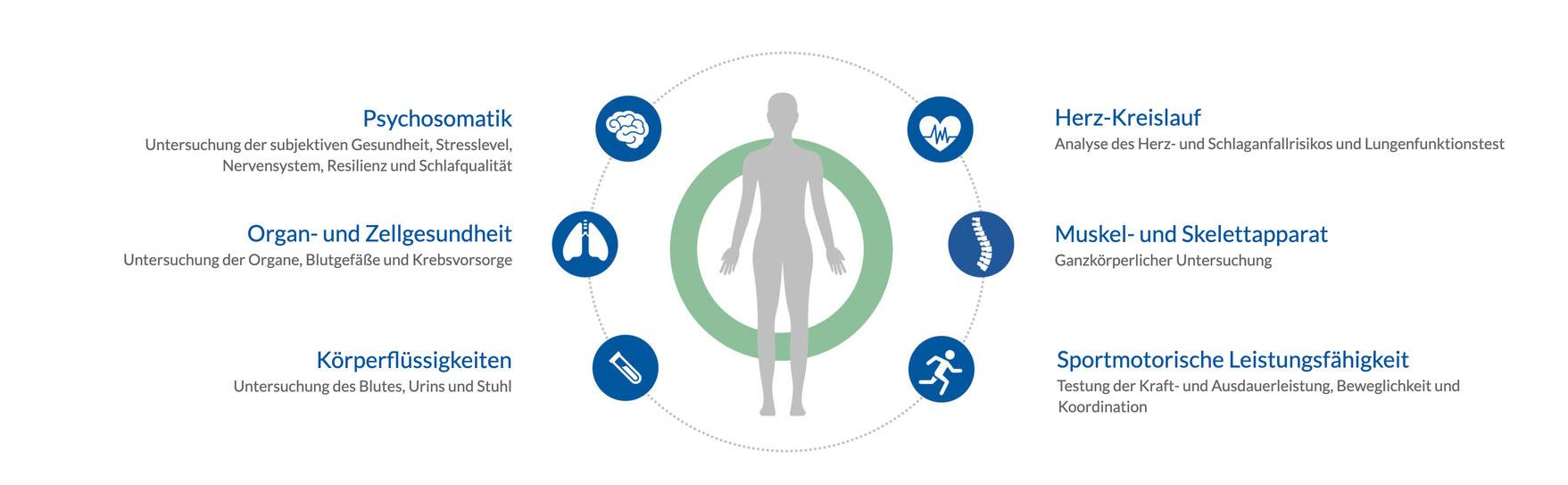 Ganzheitliche Gesundheitsvorsorge in der betrieblichen Gesundheitsförderung