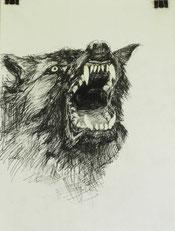 """""""Wolf"""", Tusche, A4, 2013"""