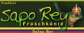 Salsa Bar Sapo Rey