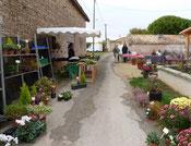 marché fermier à la Pérotonnerie de Rom, bordé de fleurs et de légumes