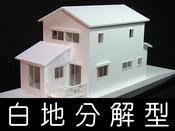 白地分解型模型