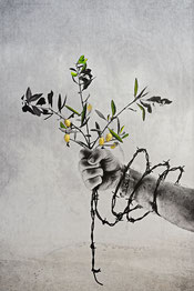 nature fruits gilding liberty symbol olives barbed-wire hope feeling
