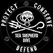 seashepherd dive partner für den schutz der meere