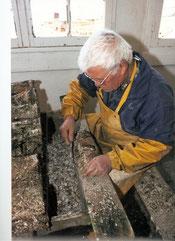 décollage des tuiles pour récolte des naissains d'huîtres plates