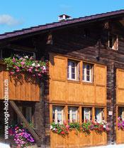 Fassaden aus Holz kontrollieren wir ebenso wie Fassaden aus Zementfaserplatten SwissPearl oder ehem. Eternit Dani Vogt D. Vogt Holzbau.ch, CH 8855 Wangen SZ