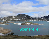 Norwegen mit Wohnmobil Reisebericht, Sognefjellet