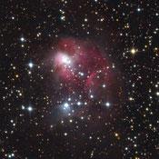 NGC 1931 und Stock 9