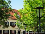Voyage à Munich - Des Biergarten verdoyants