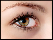 Augenbrauen und Wimpern Model Grün-Braun