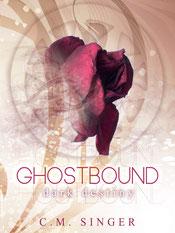 Ghostbound - dark destiny, Englisch, 270 Seiten
