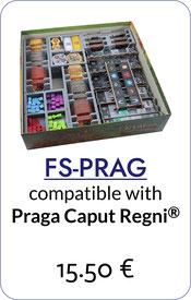 folded space insert organizer praga caput regni