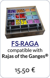 folded space insert organizer foam core rajas of the Ganges