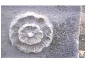 Die Rosette an einer Stele der ägyptischen Göttin Isis auf Delos ist mein Logo.