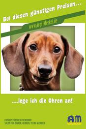 www.Argi-Merkel.de - ...lege ich die Ohren an - Friseur Frensdorf