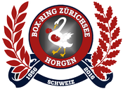 www.boxringzuerichsee.ch