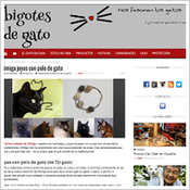 bigotes-de-gato-joyas-pelo-animal-mi-miga