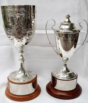 Emerging Playing of Year Trophies