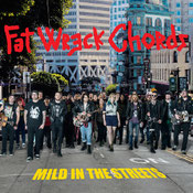 Mild in the Streets - Fat Music Unplugged