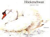 BiHU Vogelführer Natur Hergenrath Völkersberg Höckerschwan