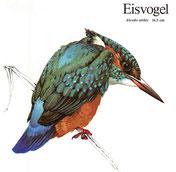 BiHU Vogelführer Natur Hergenrath Eisvogel