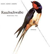 BiHU Vogelführer Natur Hergenrath Rauchschwalbe
