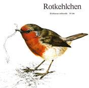 BiHU Vogelführer Natur Hergenrath Völkersberg Rotkehlchen