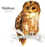 BiHU Vogelführer Natur Hergenrath Völkersberg Waldkauz