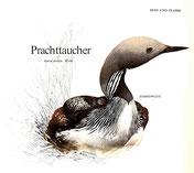BiHU Vogelführer Natur Hergenrath Prachttaucher
